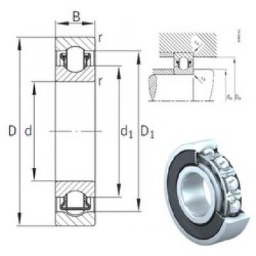 50 mm x 80 mm x 16 mm  INA BXRE010-2RSR needle roller bearings