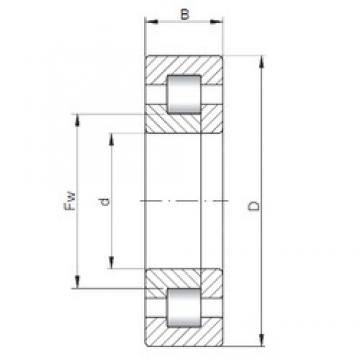 110 mm x 240 mm x 50 mm  ISO NUP322 cylindrical roller bearings
