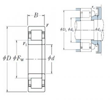 65 mm x 140 mm x 33 mm  NSK NUP 313 cylindrical roller bearings