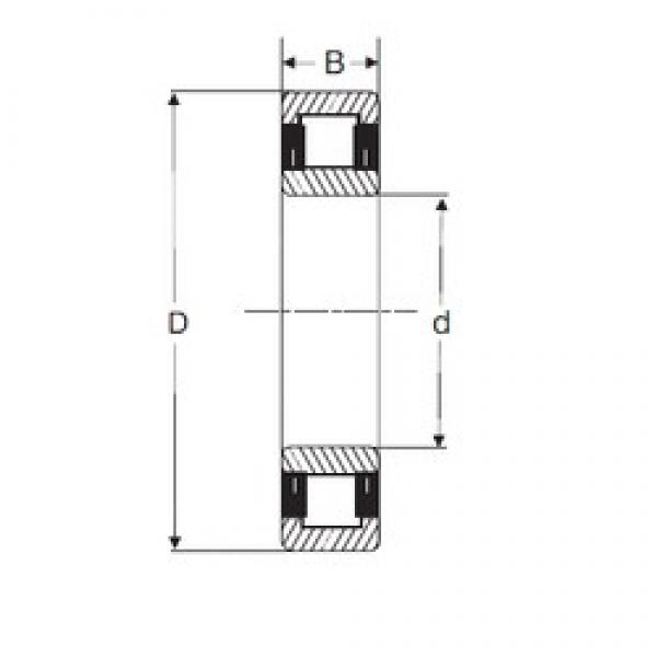 110 mm x 240 mm x 50 mm  SIGMA NU 322 cylindrical roller bearings #1 image